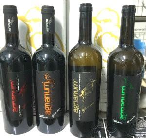 bottiglie vini agnanum